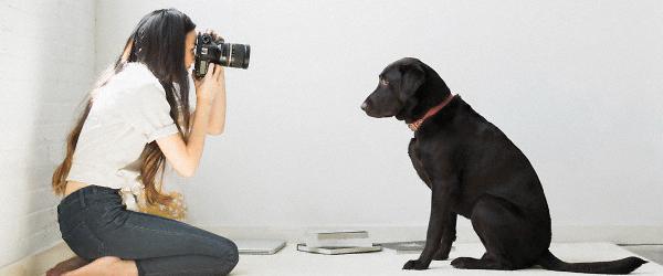 カメラマンとフォトグラファー