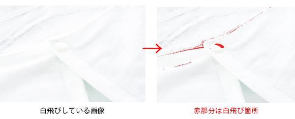 白部分を強調した写真