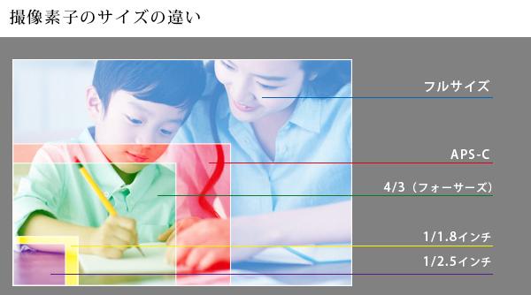 撮像素子のサイズ説明