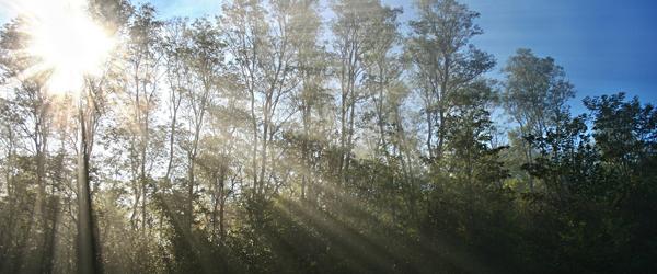 太陽光を利用した写真の撮り方